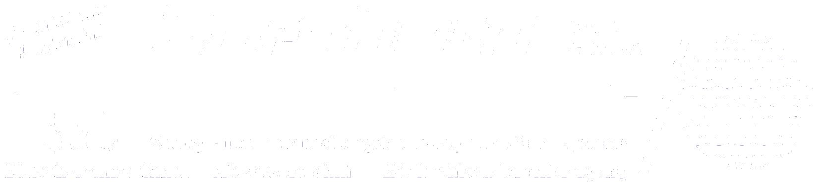 Bornhorn Gmbh & Co KG